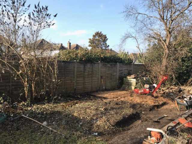 garden-clearance-banstead-during